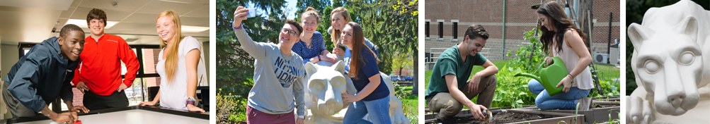 Students play air hockey; students pose for selfie by campus lion shrine; students in pollinator garden; Penn State Schuylkill lion shrine