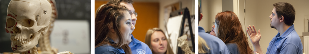 Radiology students in the classroom