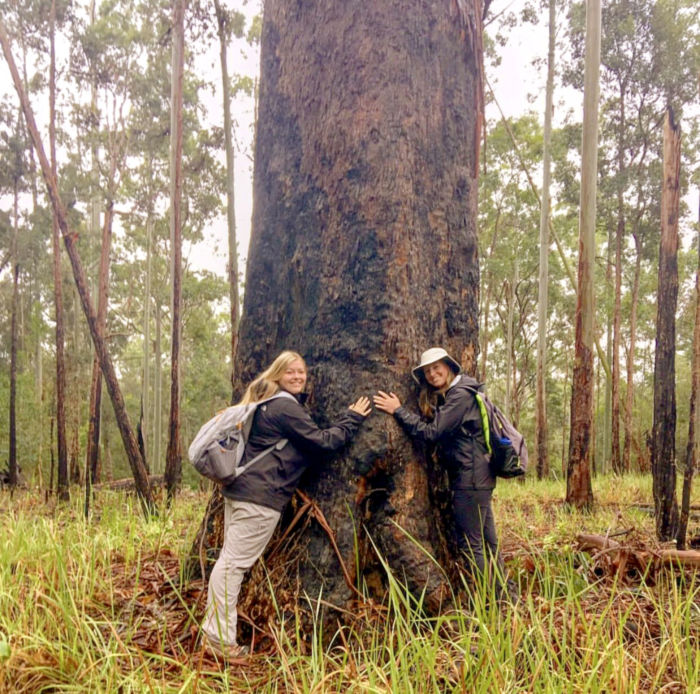 CHANCE participants Alexis Bowser & Kylee Clark with a giant tree in the rainforest.
